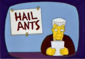 Hail ants